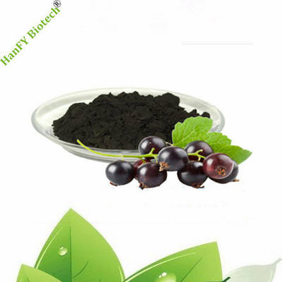 2019 Fresh Fruit Extract of Ribes Nigrum L Concrete
