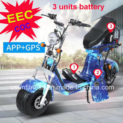 EEC Electric Harley Scooter with 3 Units Remove Battery for Adult Double Seats
