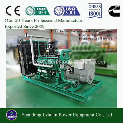 10kw to 600kw Biomass Electric Power Generator Suitable for Gasification Gas