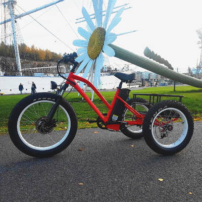 Hot Model Fat Tire Electric Tricycle