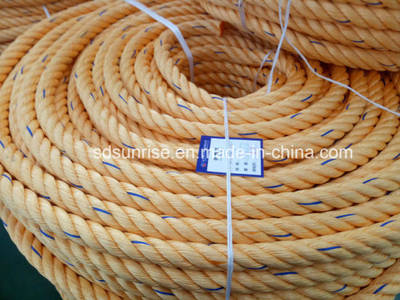 Equal Dsr Quality PP Rope for Tug Boat Mooring Rope Fiber Rope pictures & photos