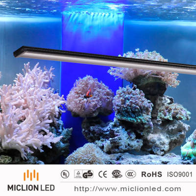 18W IP67 Aluminum+PC Customized Waterproof LED Aquarium Light