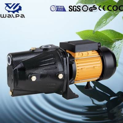 Copper Wire Electric Self-Priming Jet Garden Pump with Micro Switch