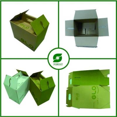 Custom Color Design Cardboard Box with Handle