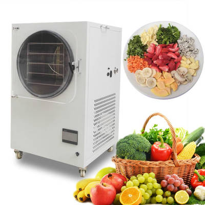 Household Mini Type Fruit Vegetable Food Freeze Dryer Machine Equipment  Lyophilizer Price