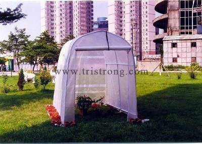 Factory Sale Garden Shed Greenhouse for Family Use Tent (TSU-162G) pictures & photos