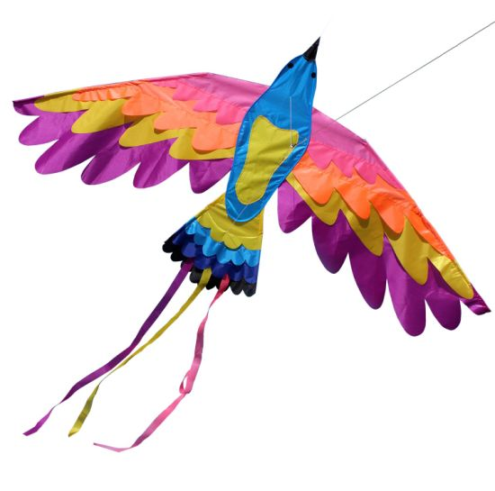Outdoor Toy Easy Flying Parrot Kite From Weifang Kite Factory