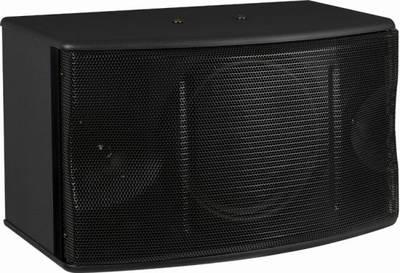 100W 10 Inch 8 Ohm Karaoke Speaker for KTV Karaoke System