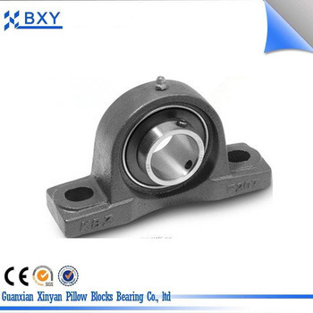 Factory Supply High Quality Pillow Block Bearing Bxy206 with Eccentric Sleeve Outer Spherical Bearin