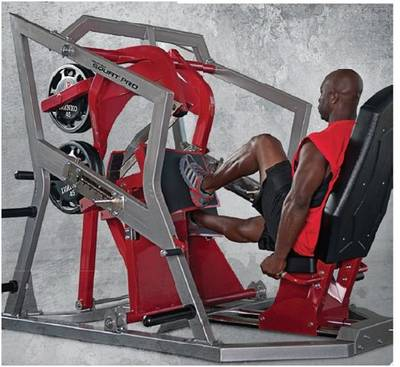 Fitness Equipment Body Building Roger Athletic Seated Squat