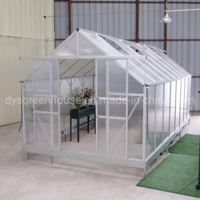 6mm Hollow Transparent Polycarbonate Sheet Garden Greenhouses (RDGS0812-6mm)