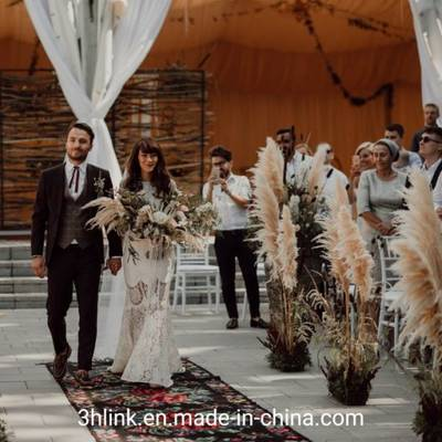 Pampas Grass Wedding for Outdoor pictures & photos