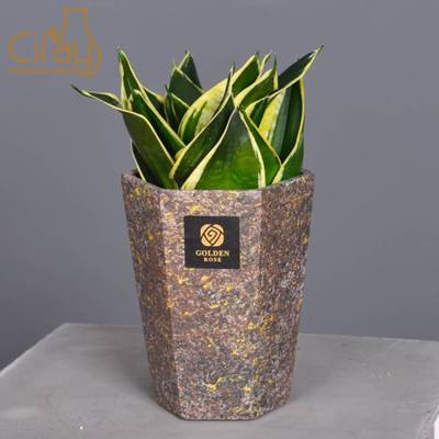 Hot Sales Golden Cement Planter for Home Decoration