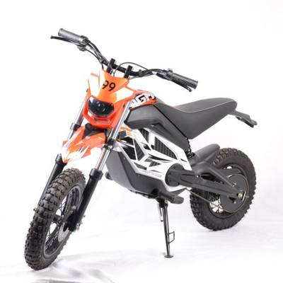 Cheap 750W MID Driver Dirt Electric Motorcycle