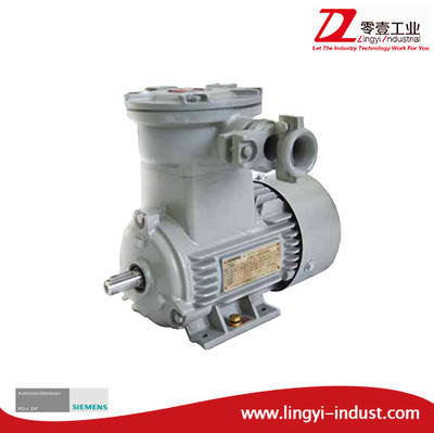 Siemens Flameproof Explosion Proof Three-Phase Asynchronous Induction Electric AC Motor