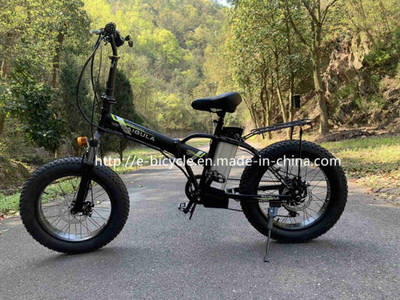 China Ce Approved E-Bicycle Foldable Bike Dirt Bike