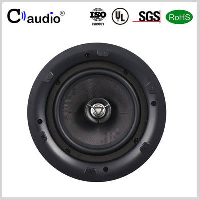 China Ceiling Speaker Mini Speaker Active Speaker