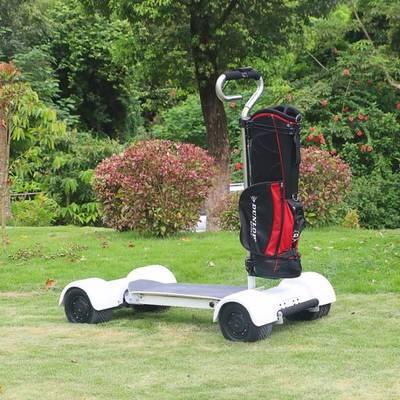 China Golf Cart Electric Skateboard Golfboard