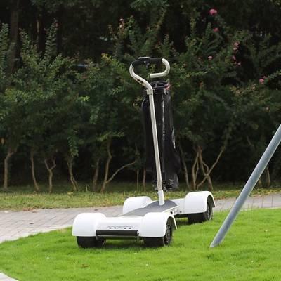 China Electric Skateboard 4 Wheel Electric Skateboard Golfboard