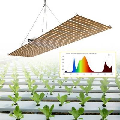 China Seedling LED Grow Light for Medical Plants Xinjia 2019 New Design Seedling Light High Efficacy