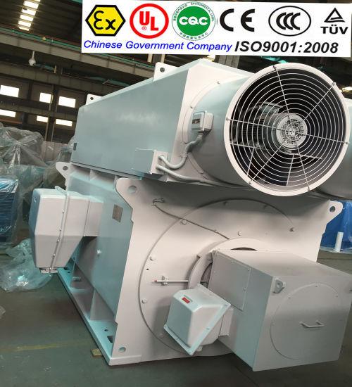 China DC Motor Shanghai Electric Motor 220V AC Motor