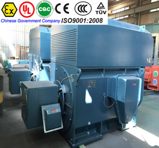China Electric Motor DC Motor AC Motor