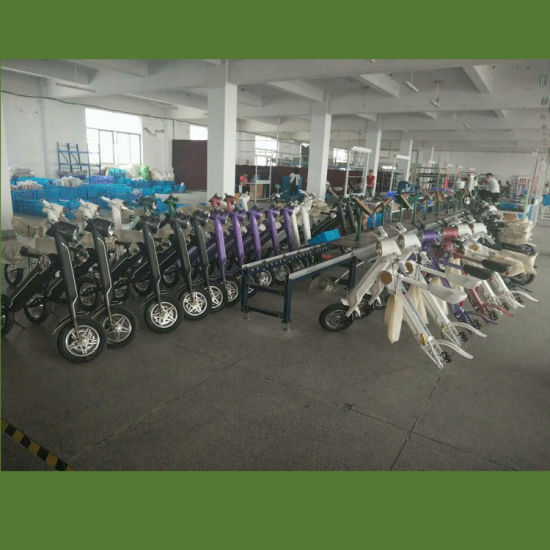 China E-Bike Ebike Electric Bicycle