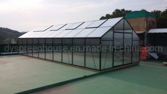 China Green House Frame Greenhouse Made of Aluminium Polycarbonate Sheets )