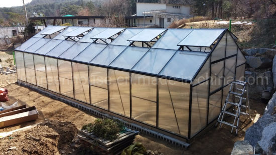 China Greenhouse Used for Agriculture Hydroponics Vegetable Planting Rdgb32406