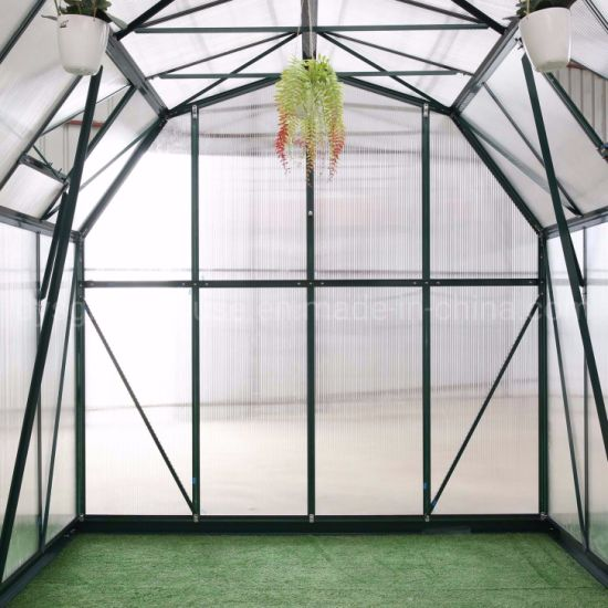 China Easily Installed Garden Used PC Panel Greenhouse