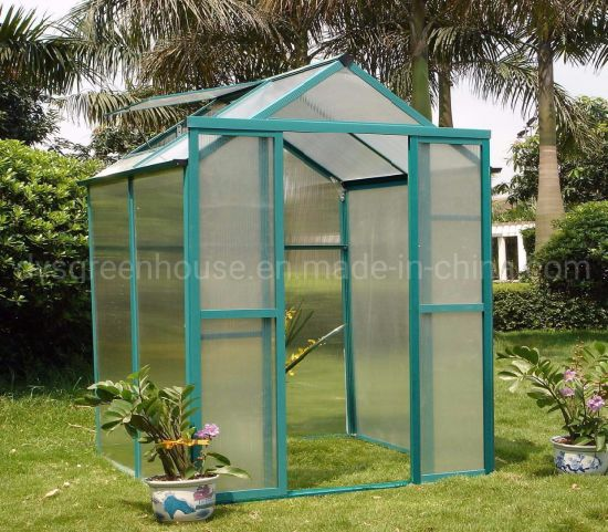 China Various Sizes of Polycarbonate Greenhouse Kits Rdga0804-4mm