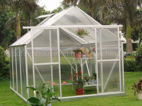 China New-Style Polycarbonate Sheet Greenhouse with Green Powder Coated